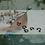 Thumbnail: Titan, svart anodiserad Horseshoe, 1,2mm