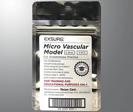 Vascular model Academic Edition (Midium)