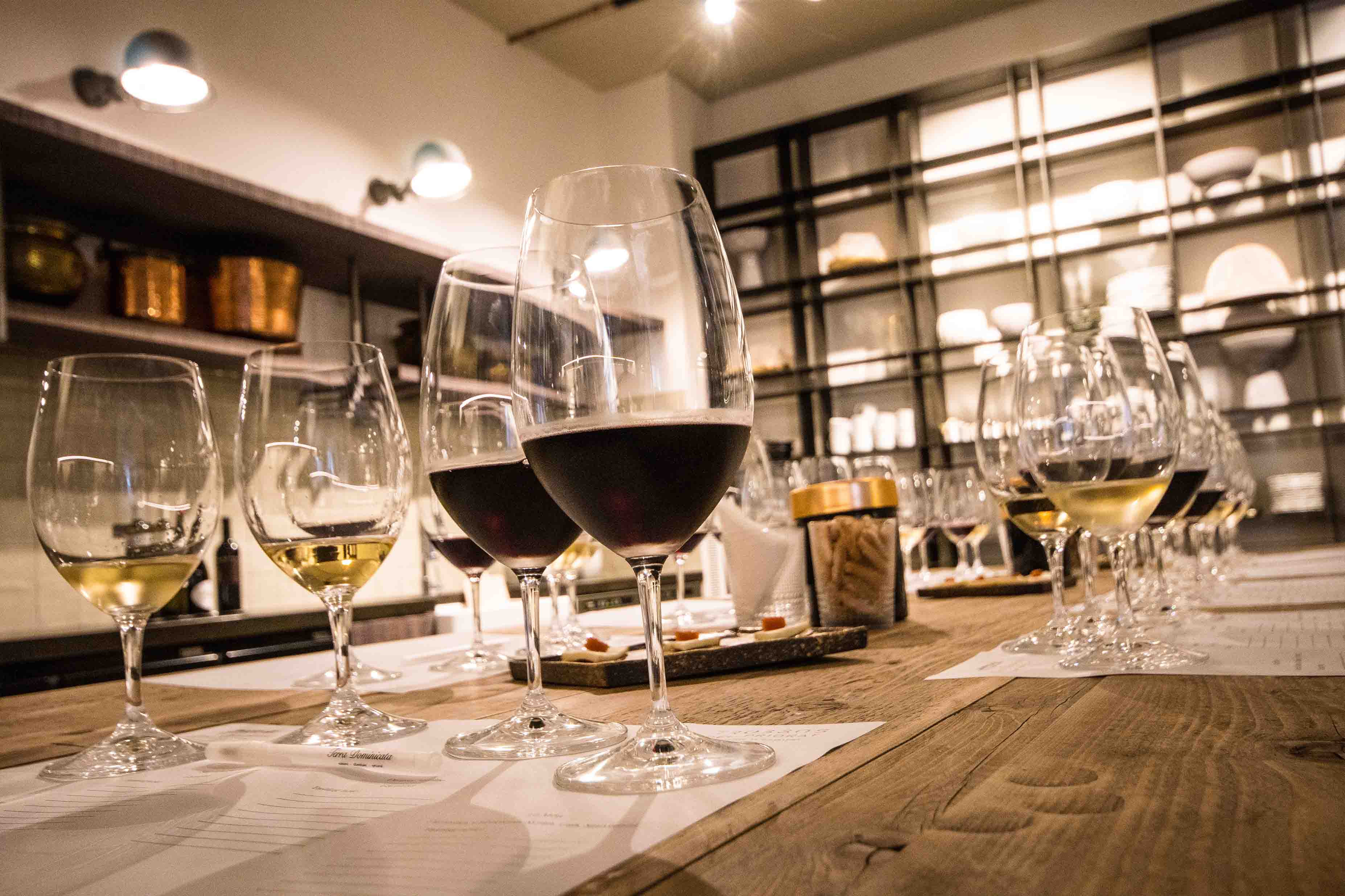 Winery tour+tasting at Terra Dominicata