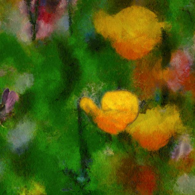 FleursDesChamps2 copie.jpg