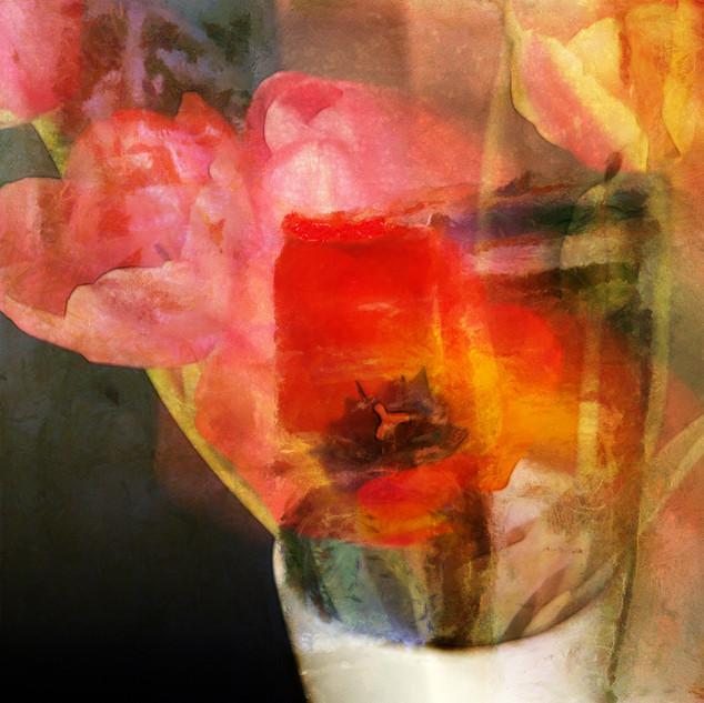 tulipes_1.jpg