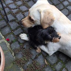 Nura mit Nachbarin Momo