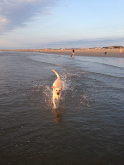 Erstes Mal am Meer