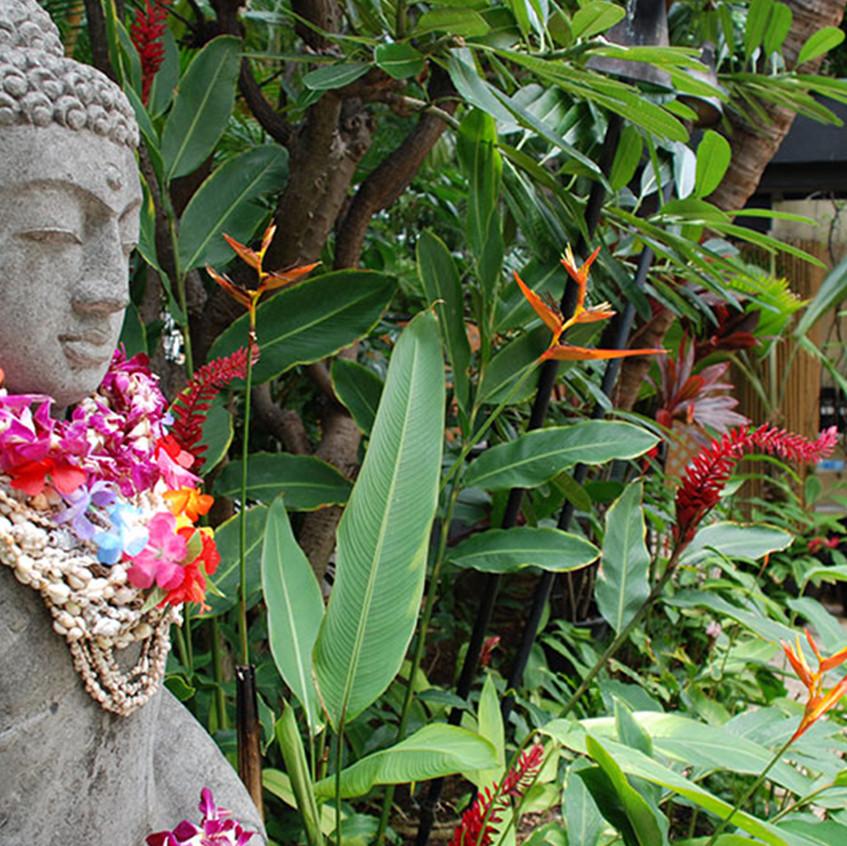 Aqua_Bamboo_Waikiki_2.jpg