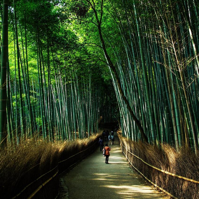 kyoto-1229559_1280