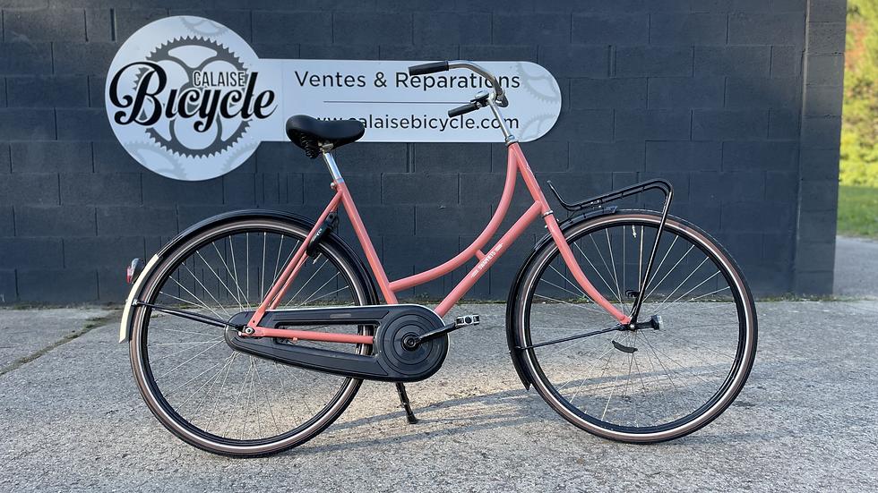 Hollandais Cycletech