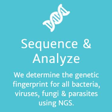Deep Shotgun Metagenomic Sequencing for Pathogens - DNA
