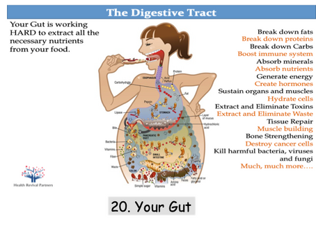 Digestive Health Rock Star - Coming Soon