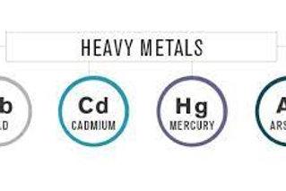 Heavy Metals & Environmental Toxins +Consult