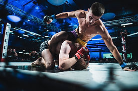 Cage fighting photography