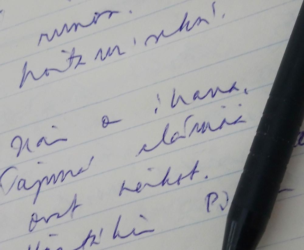 Päiväkirja Sanamieli