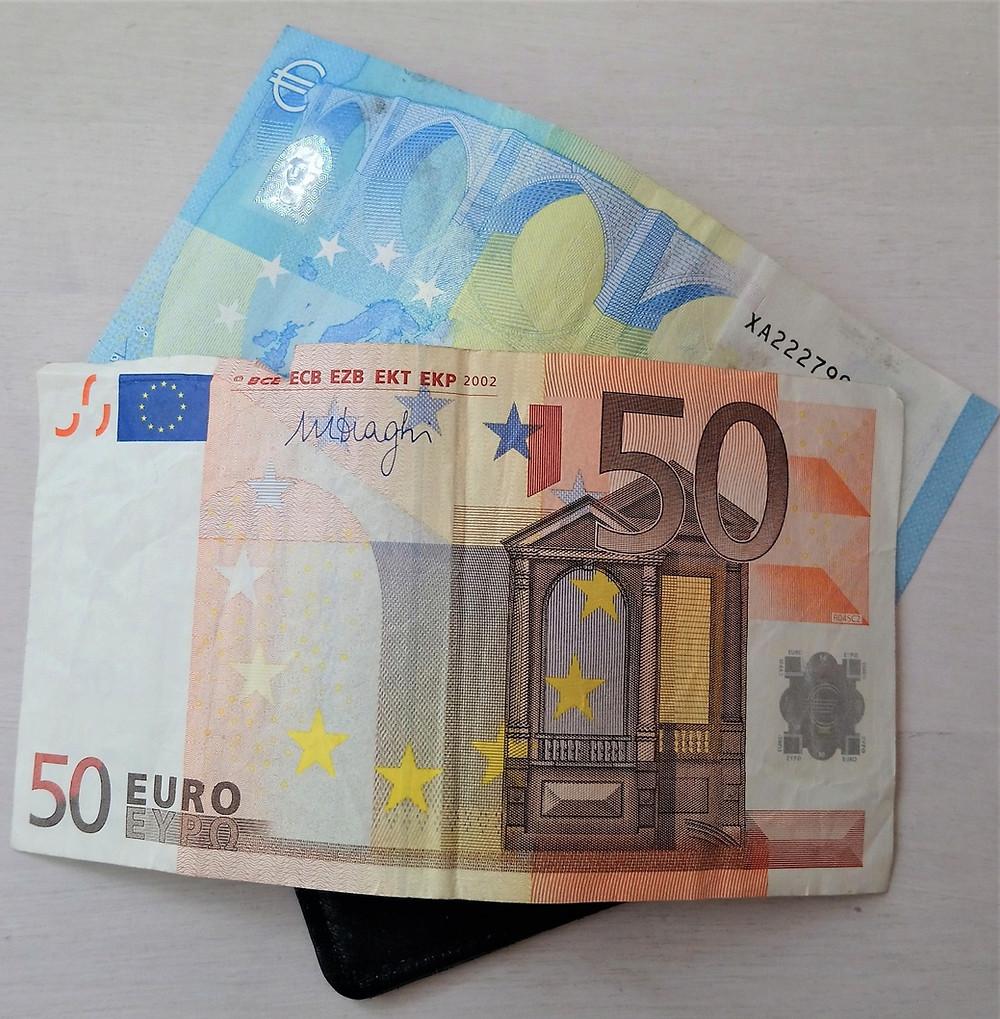 Raha Sanamieli