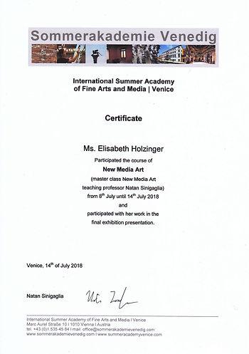 New Media Art Certificate.jpg