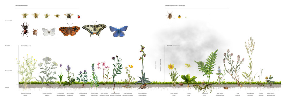 Plakat Insekt extinction