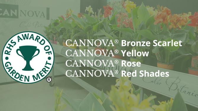 4 x Award of Garden Merit for Cannova