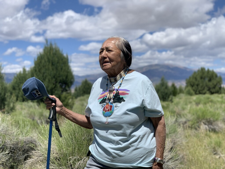 New angle: Tribes and Church team up to protect water and Swamp Cedars.