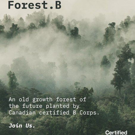 There is no Planet B. But there is a Forest B.