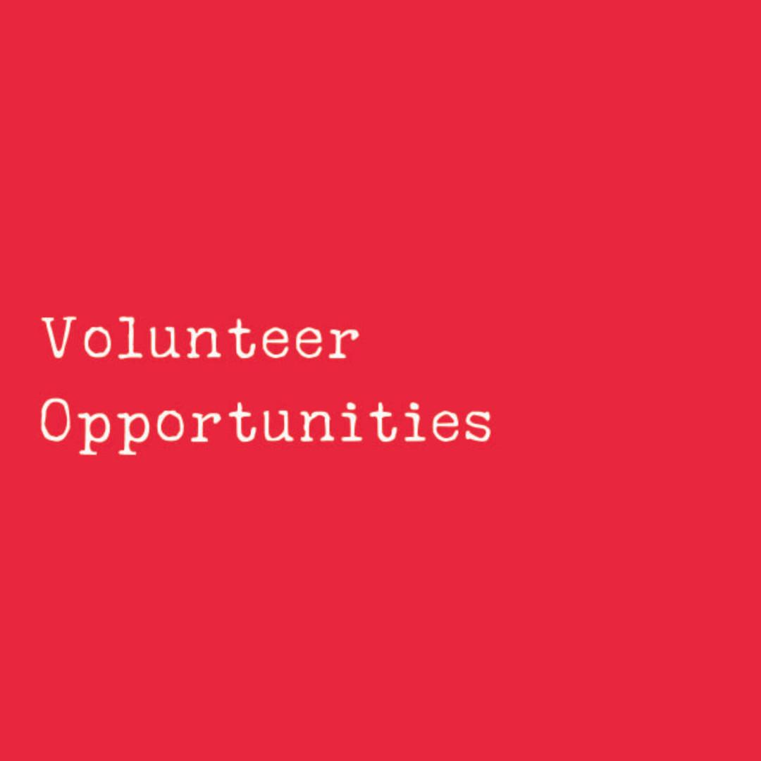 Volunteer Opportunities.jpg