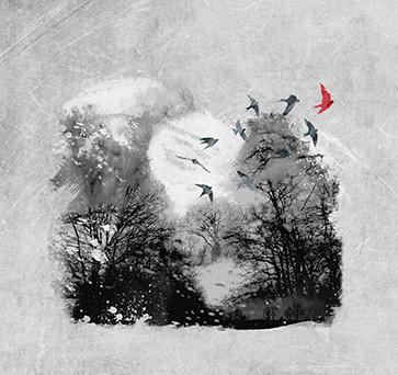 pochette d'album appel d'air