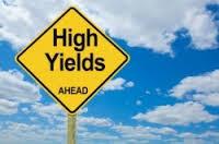 תשואת החזר הון למשקיעים (Payout Yield)