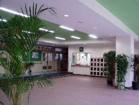 文化中学校 玄関