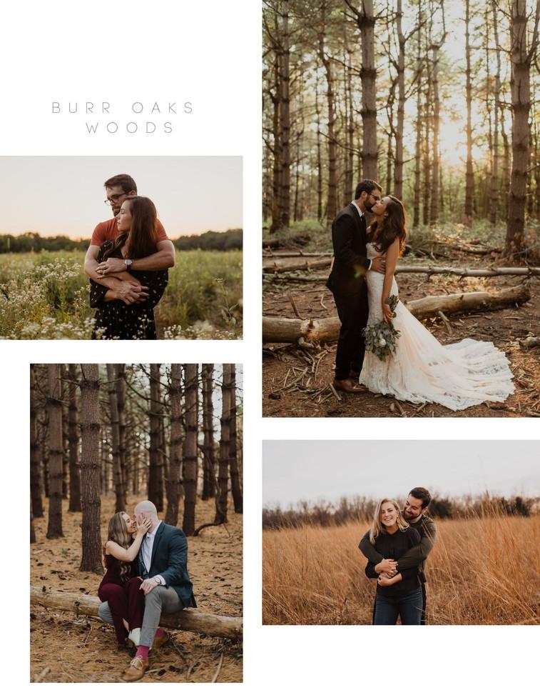 Burr Oaks.jpg