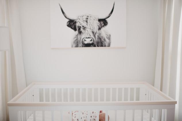 JeffersonMayPhotography_Families-4.jpg