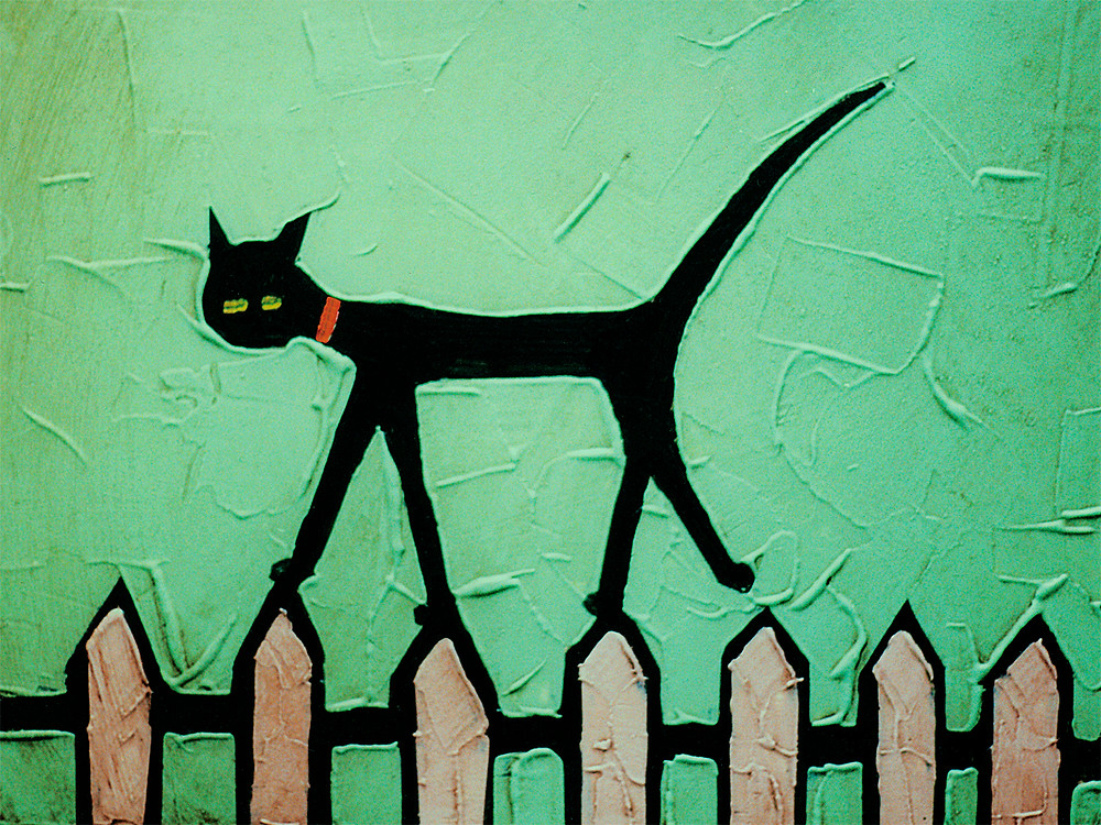 Cat on Fence by Colin Ruffell