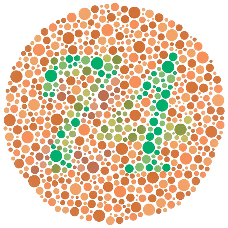 Example of Ishihara test