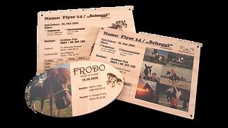 Namensschilder Pferde 3er.png