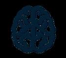 Cerveau Floue.png