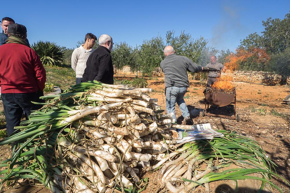 Calçots, a tipical sweet onion from Alt Camp, Spain.