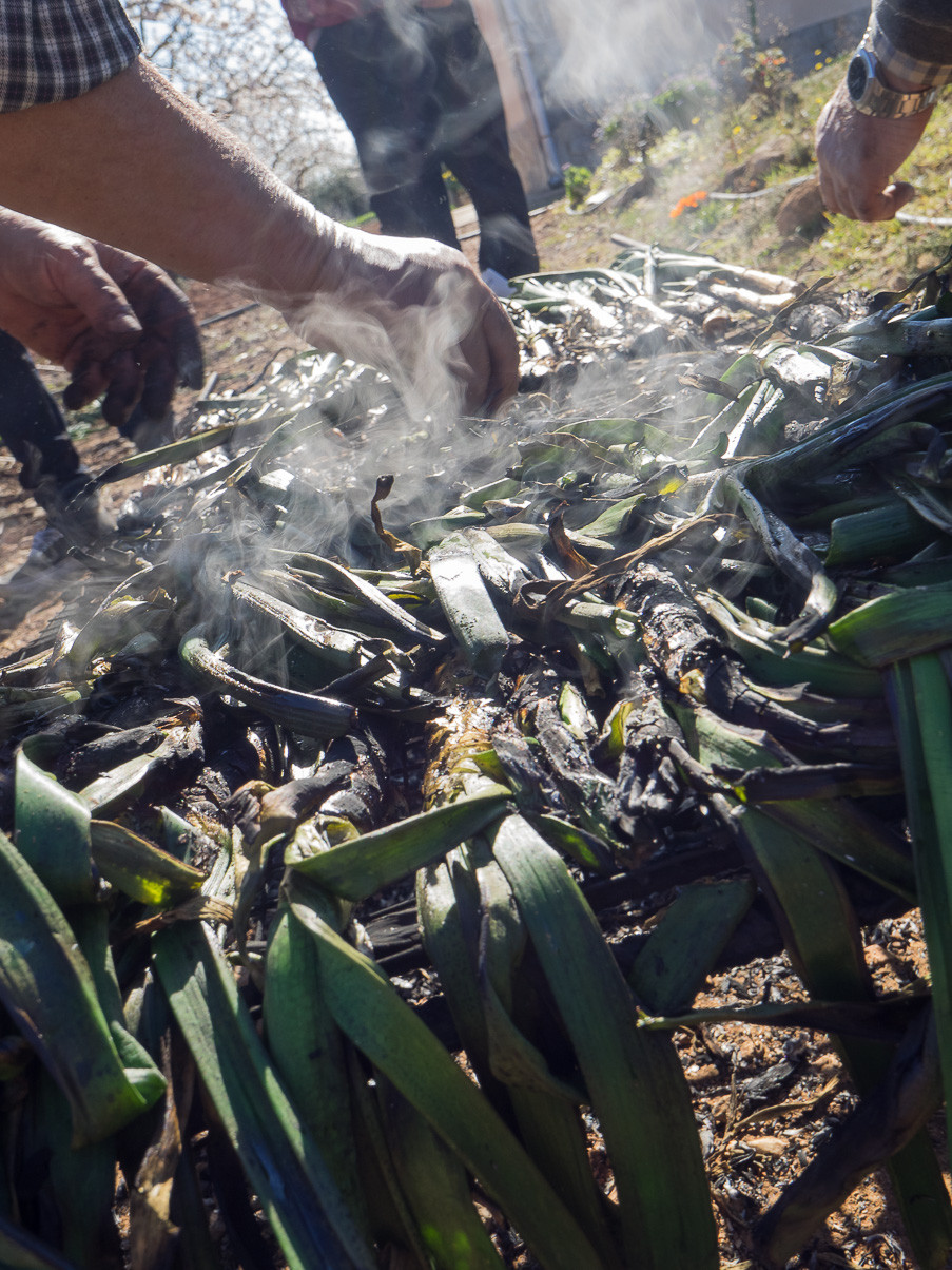 the final moment of the calçots cooking.