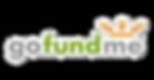 gofundme-logo-png-15.png