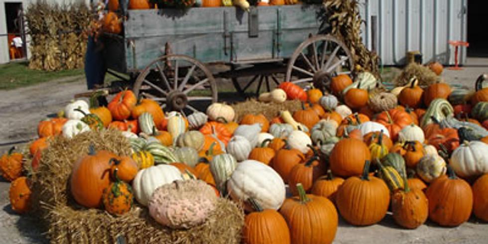 Pumpkin Patch Meet Up and Tour