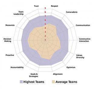 Team Performance Coaching