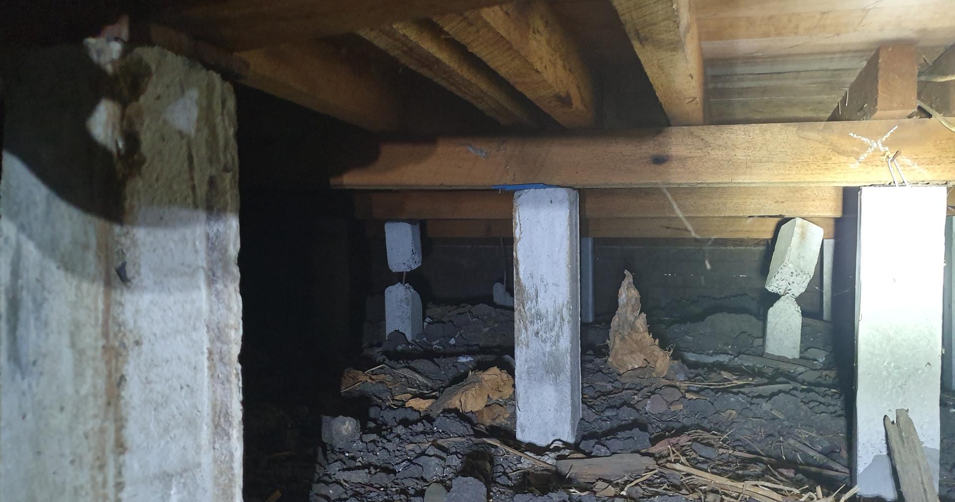 Distressed concrete stumps.
