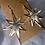 Thumbnail: Golden Star