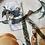 Thumbnail: Blue Lace Bow Pearl