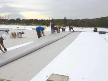 Single-Ply Roof Membrane Types: What Are They and How Do They Differ?