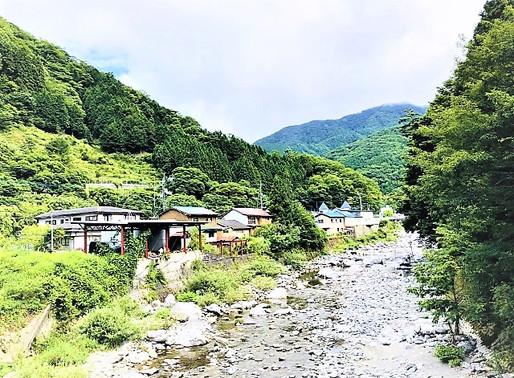 徳島オフィスの誕生 ~都会と地方の新たな「結び目」~