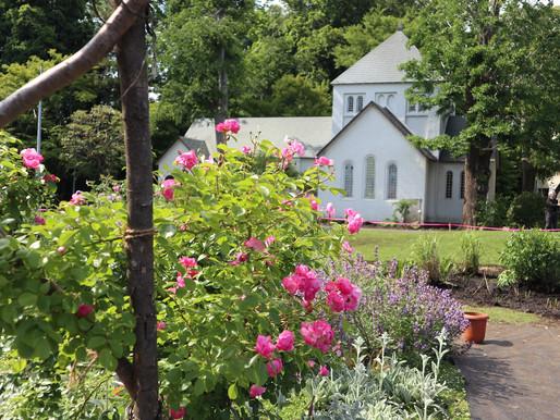 コミュニティ・ガーデンという場~施設の内と外のあいだ~