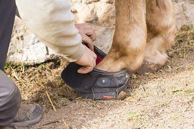 hoof-boot-e1526578056903.jpg