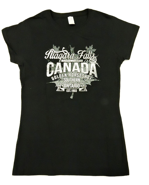 5562-Niagara Falls Vintage