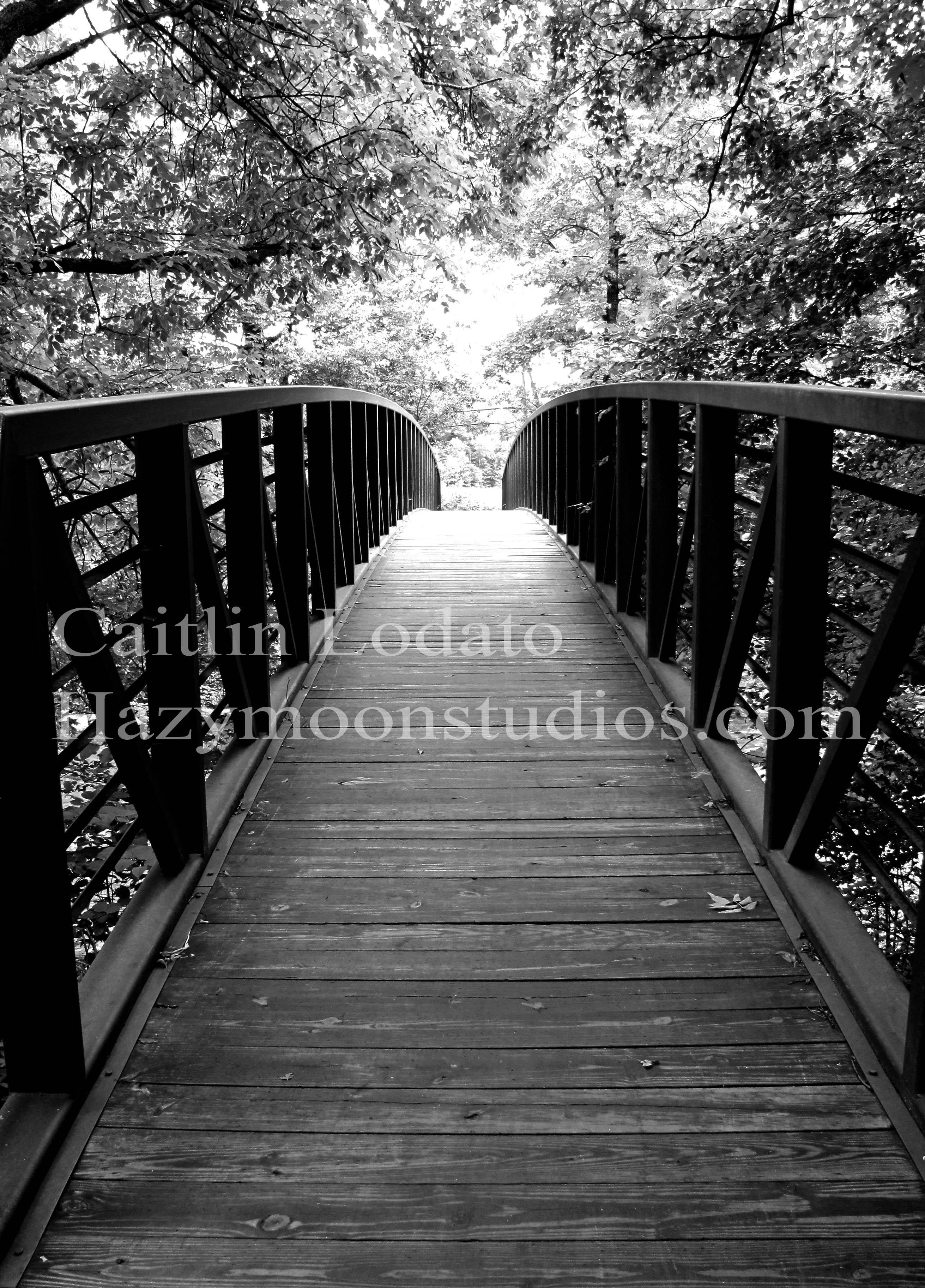 Stowe, VT Bike Bridge-Photography
