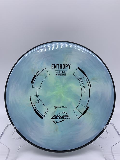 Neutron Entropy