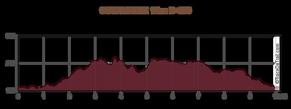 profil GOURMANDE 11km D+250.png