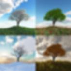 Fotolia_Home Page.jpg