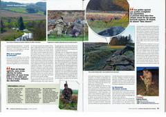 revue de chasse brocard en Ecosse