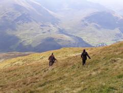 Chasse dans les highlands en Ecosse